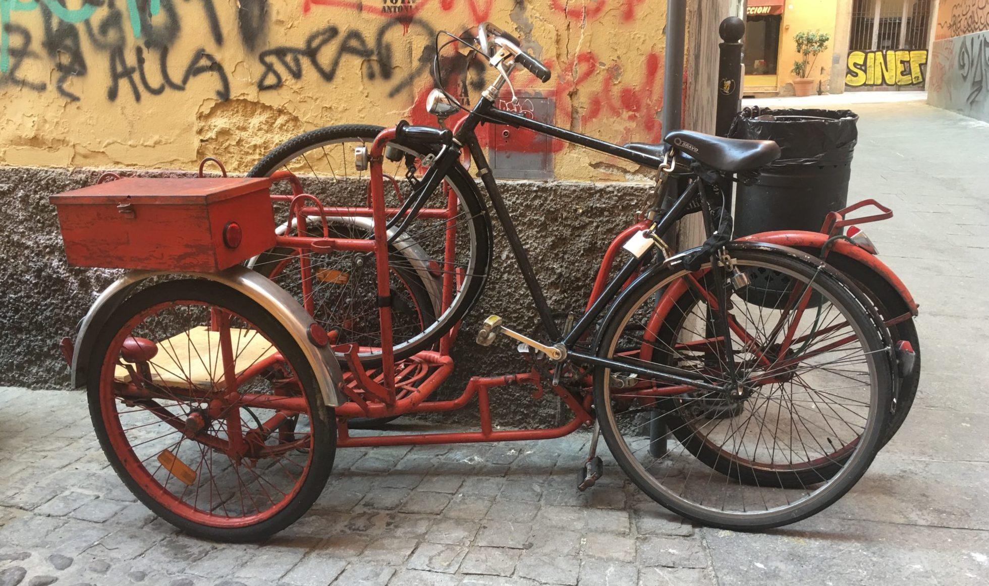 Bolonia rower