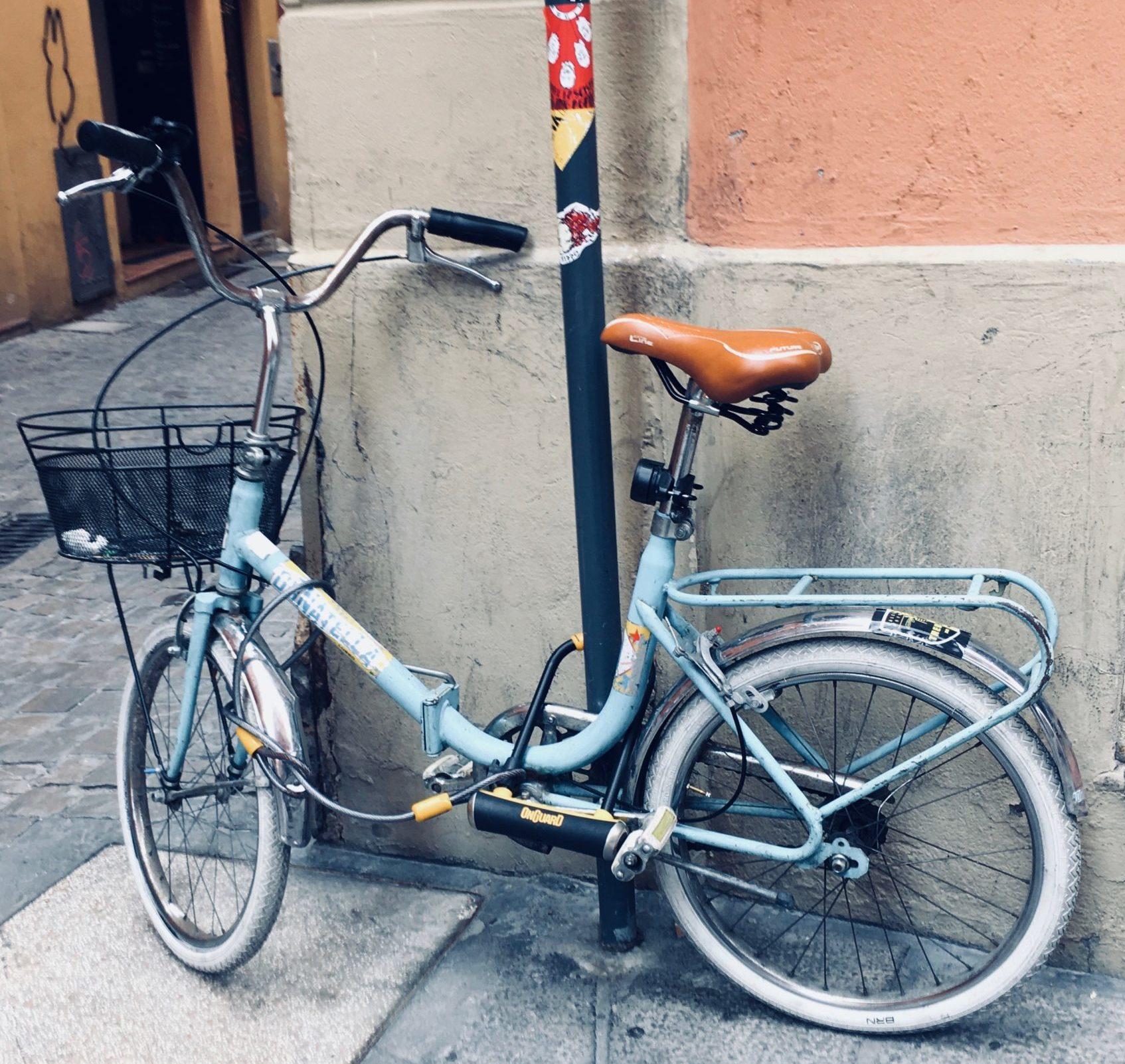 rower boloński