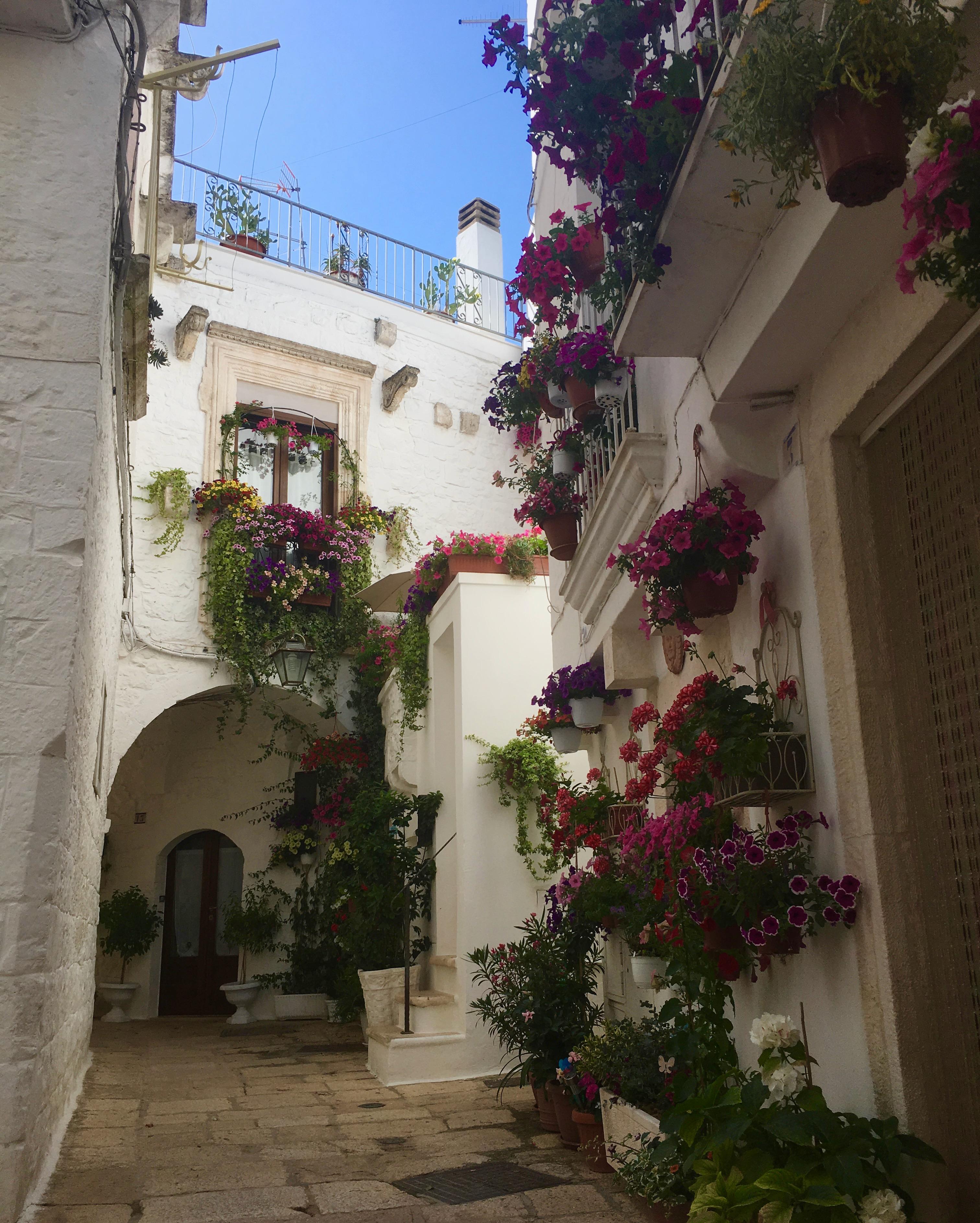 Cisternino zwiedzanie uliczek przyozdobionych kwiatami
