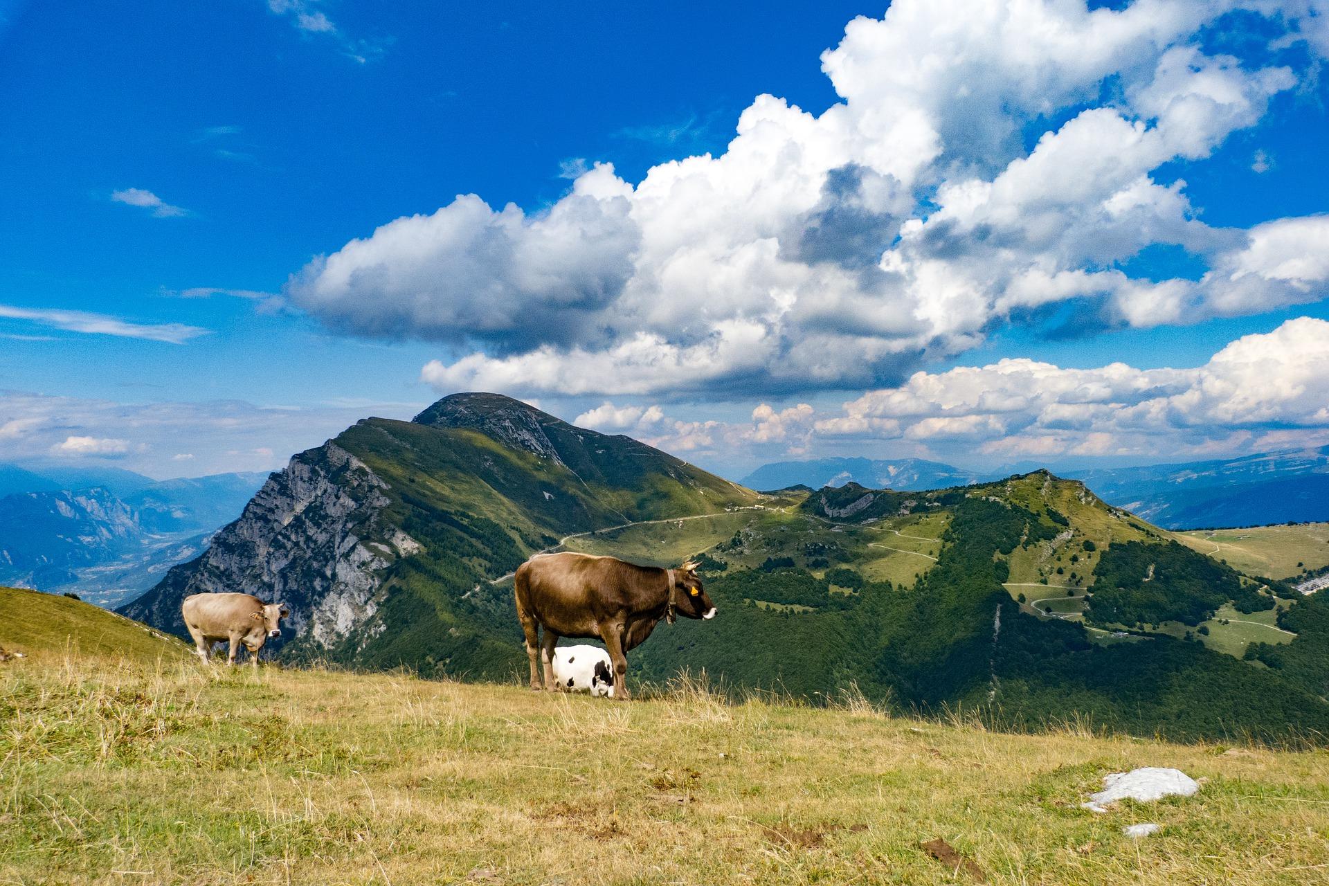 Monte Baldo zwiedzanie